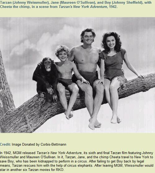 The BEST Tarzan - Johnny Weissmuller c1942