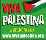 Viva Palestina button150×128